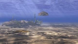 Oceanic 0212: A turtle swims through sunlight filtered water above a sandy ocean floor.