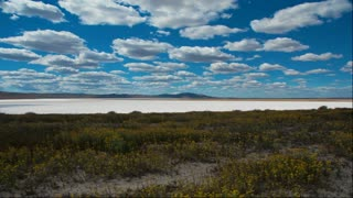 Time lapse clouds travel over Soda Lake salt flats and wildflowers in the Carrizo Plain, California.
