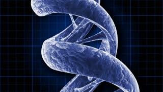 A rotating blue DNA strand (Loop).