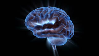 Brainstorm 104: A rotating human brain electrically charged with thought (Loop).