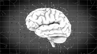 Brainstorm 108: A rotating human brain with futuristic synapse neurotransmitters (Loop).
