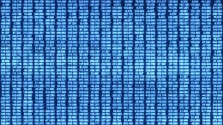 Video Background 2354: A data grid of streaming numbers (Loop).
