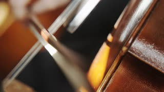 close up of strings on cello