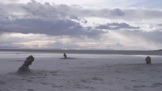landscape of empty beach