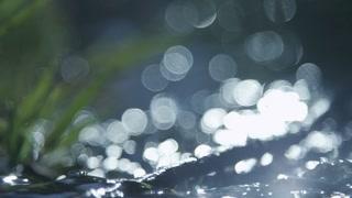 River flow as light dances across the surface
