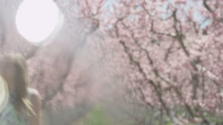 Slow motion girl walking through pink blossoms in orchard