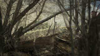 slow motion of man trail running jumps over log