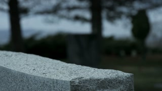 slow motion rose placed on top of grave stone in cemetary