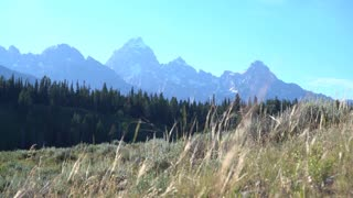 landscape of the Grand Tetons in summer