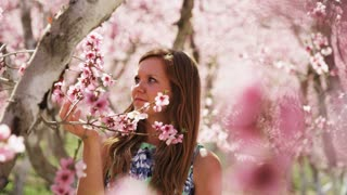 slow motion, girl admiring pink blossoms in orchard