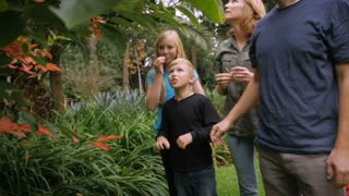 A family of 5 walk holding hands through a tropical garden - slow motion steadicam