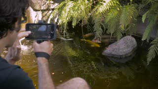 A middle aged dark haired man shoots video with his mobile phone of several koi fish swimming around in a small backyard pond, while we see fish in his viewfinder.