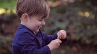 A perfectly healthy young cute toddler boy in a blue shirt standing in a park or backyard of a residential home, playing with a small toy like he is driving or steering a car.