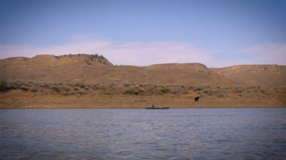 A single person silhouette floating and paddling down the Missouri river in a canoe or kayak while a free range cow runs up a hill.
