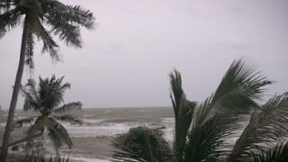 An approaching storm is causing rough ocean seas and strong winds on an isolated beach with blowing palm trees