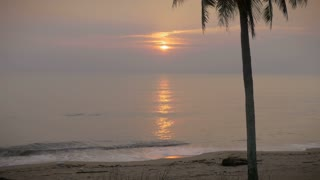 Beautiful sunrise on an empty beach and a single coconut tree with sound as the waves gently crash along shore