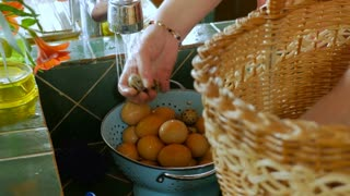 Close up of a woman rinsing chicken and quail eggs from a basket