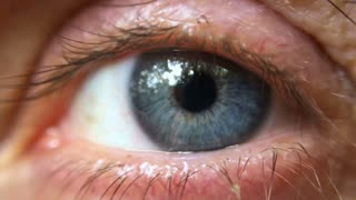 Extreme close up of a blue eye reflecting trees outdoors, moving around quickly and opening wide for the camera