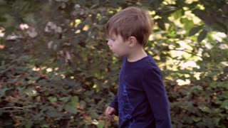 Handheld slow motion shot of a very happy blond hair blue eye 2 year old toddler playing outside with trying to pick up a large rock in a park or yard of a private home.