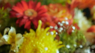 Push in close up of an assortment of a bouquet of colorful flowers