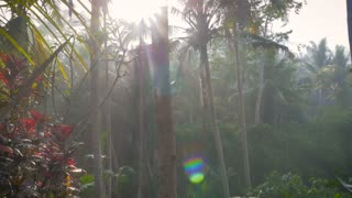 Slow hand held pull out of side view of a middle aged man hand on chin, thinking and overlooking the green jungle of an exotic island with lens flare and sun glare in slow motion