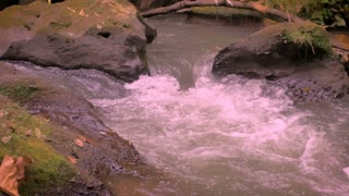 Slow motion pan of fresh, pure, clean, water going down stream in a river over rocks in a green environment such as a forest or a jungle in the summer, fall, or spring.