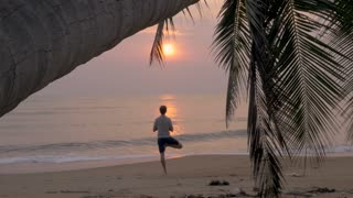 A friendly stray dog wagging his tail approaches a man doing tree pose yoga on an empty ocean beach during sunrise