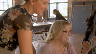 All young attractive confident women creative business team working together on computer and laptop technology on their modern start up handheld stabilized slow motion