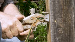 Attractive healthy active 70 year old baby boomer man using rusty wrench to remove a nail from a broken fence at his home