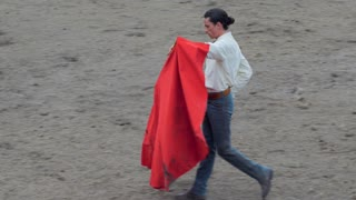 Bull charging very close to a matador bullfighter's red cape at the end of a bullfight