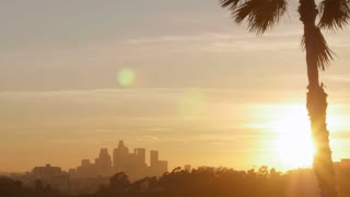 Downtown Los Angeles sunset time lapse and a palm tree shot from East LA illuminating the night skyline