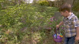 Happy smiling 4 - 5 year old little cute boy finding easter eggs during a traditional easter egg hunt in slow motion