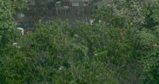 Heavy rain falling on top of trees shot from above in a city