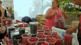 PUERTO VALLARTA, MEXICO - CIRCA MARCH 2018 - Mexican vendor taking money for fresh fruit blueberries, raspberries, and blackberries at a Saturday market in slow motion