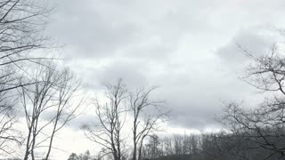 Spooky eerie stormy bare winter trees time lapse with clouds during sunset turning sky dark to night