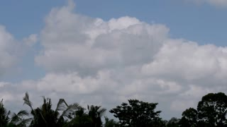 Time lapse of big fluffy white clouds over the jungle sky in Ubud, Bali