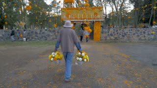 TZURUMUTARO, MEXICO - NOVEMBER 1, 2016 - Man carries marigold flowers into a graveyard decorated for the Mexican celebration Day of the Dead to honor those who have died during this traditional holiday