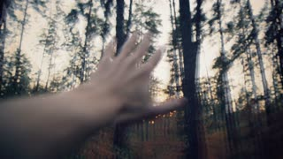 Dizziness. Hallucinations. Blurry hand in the background of the forest