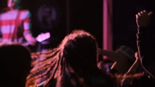 Guy with the dreadlocks at a rock concert