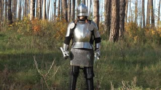 Knight ready for battle in the forest