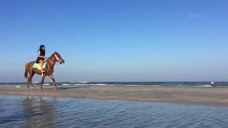 Horse Riding On The Beach In Thailand