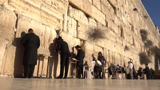 Jews Pray in front of The Western Wall