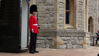 Shot of British queen's guard on duty