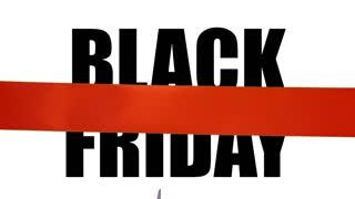 Black Friday Promotion Event