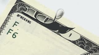 Hundred Bucks bill