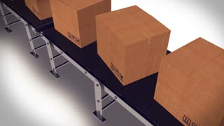 Packages sorted on conveyor belt.