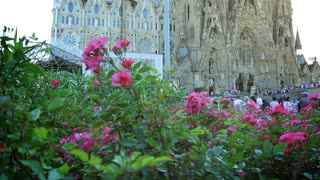Sagrada Familia and flowers in Barcelona, Spain. Camera panning.