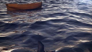 3d rendering of shark circling small boat in the ocean