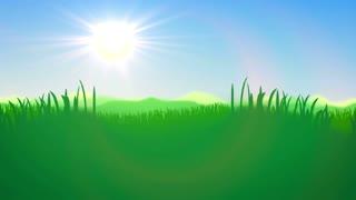 Green Grass field against a blue day sky. Natute, grass, sun, sky, dusk.