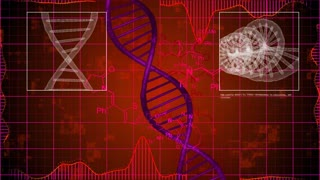 X-ray scanning of DNA strands with a red background. Abstract science monitor screens.